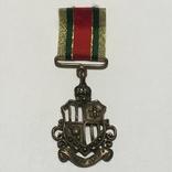 Сувенирная медаль, фото №2