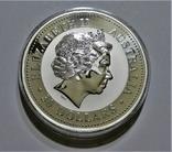 """1999 Австралия, серебро, 1 килограмм """"Год Кролика"""", фото №5"""