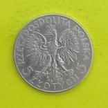 5 Злотих 1933р. Срібло., фото №3