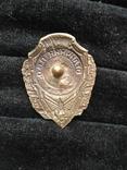 Знак отличник пво, копия, фото №3