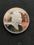 Канадский доллар (3шт.), фото №6