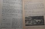 Солодке печиво ,Львов ,1970г авт.Дария Цвек, фото №9