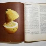 1969 Книга о вкусной и здоровой пище. Пищевая промышленность. Кулинария, фото №10