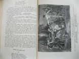 Литературное наследство Декабристы-литераторы т.59 1954г., фото №6
