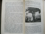 Литературное наследство Декабристы-литераторы т.59 1954г., фото №11