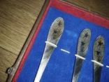 Ложки столовые набор в футляре 8 шт.завод в харькове им.малышева. нерж., фото №3