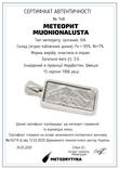 Підвіска із залізним метеоритом Muonionalusta, із сертифікатом автентичності, фото №11