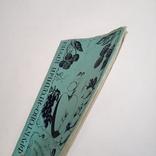 1990 Фруктово-ягодный круиз, Иоффе Г.А., фото №5