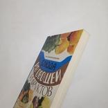 1978 Блюда из овощей и фруктов, Белоножко-Крылова В.И., фото №5