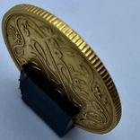 100 пиастров. Османский Египет. Abdul Hamid II 1293/12 AH  1876. (вес 8,49 г), фото №6