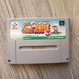 Jikkyou Power Pro Yakyuu 3 (NES), фото №2