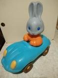 Заяц в машине., фото №7