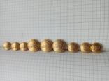 Пуговицы латунь гербовые, фото №2