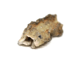 Фрагмент фульгурита, 3,6 грам, з сертифікатом автентичності, фото №8