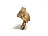 Фрагмент фульгурита, 3,6 грам, з сертифікатом автентичності, фото №9