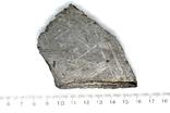 Залізний метеорит Aletai, 200,0 грам, із сертифікатом автентичності, фото №4