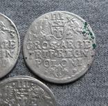 Трояки 1623 года. Сиг. ІІІ Ваза. Разновидности ( 3 штуки )., фото №11