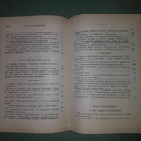 Новейшая Английская Литература. Историко-архивные материалы XIX века, фото №4
