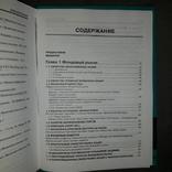 Бизнес книга Сегментация финансового рынка 2006, фото №10