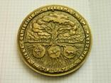 Настільна медаль 21., фото №2