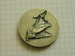 Настільна медаль 22., фото №3