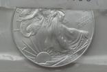 Доллар США 2008 Американский орёл Шагающая свобода, фото №3