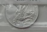 Доллар США 2008 Американский орёл Шагающая свобода, фото №6