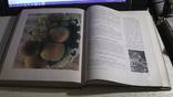 Книга о вкусной и здоровой пище. 1955 г., фото №10