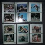 Київський зоопарк 1976, фото №5