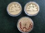 Монетовидные сувениры . Княжий монетный двор. Позолота 999, фото №6