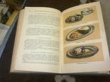 Кулинария, изд-во: Торговой литературы, Москва - 1955, тираж 60 тыс., фото №5