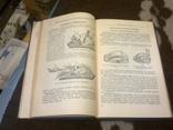 Кулинария, изд-во: Торговой литературы, Москва - 1955, тираж 60 тыс., фото №8