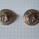 2 пуговицы с фрака герб корона. Франция 26 мм, фото №2