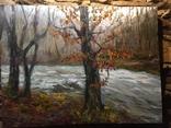 Пейзаж с горной речкой масло холст 60/80, фото №2