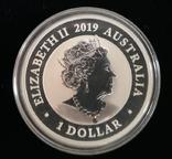 Австралия 1 доллар 2019 г. Райская Птица серебро 1 унция 999 пробы, фото №3