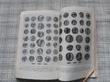 Монеты Ольвии. П. О. Карышковский, фото №8