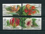 Марки гашеные США цветы растения флора, фото №2