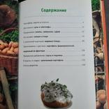 Любимая картошка Экономно Вкусно Просто 2006, фото №5