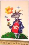 Открытка чистая: Любовь зла... / худ-к Б. Пушкарев, изд-во Нью Тон, фото №5