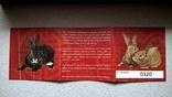 Набор монет год кролика 2011, фото №6