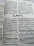 Заготовки впрок 1991р Ягод фруктов Орехов, фото №5