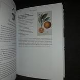 Чай с Джейн Остин Слово 2012 Подарочное издание, фото №9