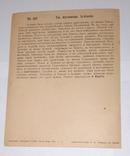 Св. мученица Иулиания. 1911г., фото №3