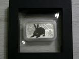 Год Кролика, ЧЕРНЫЙ КРОЛИК - унция, серебро 999, 1 доллар - 2011 - ПОЛНЫЙ КОМПЛЕКТ, фото №3