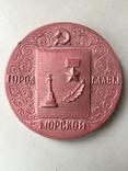 Памятная медаль, металл, фото №2