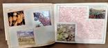 Альбом республика Молдавия. Школьная работа по географии учеников СССР., фото №5