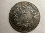 Медаль Рижское общество садоводства 1876 год s94 размер 55 мм копия, фото №3