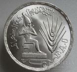 """1 фунт 1976 г. Египет """" ФАО """", серебро, фото №4"""