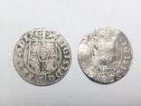 Полторак (1,5 гроша) 1624 Года. Сигизмунд III, фото №2