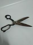 Большие старинные ножницы, фото №4